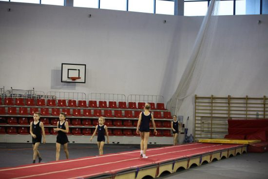 Спортсмены разыграли медали открытого краевого первенства по прыжкам на батуте, акробатической дорожке и двойном мини-трампе.